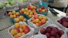 New Canaan Farmers' Market