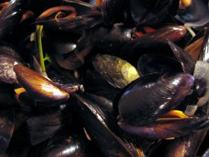 Steamed Mussels With Indian Spices