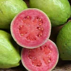 "A Full Stomach Says: ""A Ripe Guava Has Worms.""  An Empty Stomach Says: ""Let Me See."""