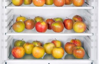 Keep Apples Crisp