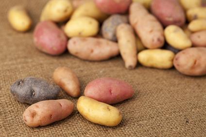 Roasted Fingerling Potatoes With Horseradish Dressing