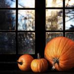 All About Pumpkins ?