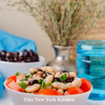 Mediterranean Bean Salad copy