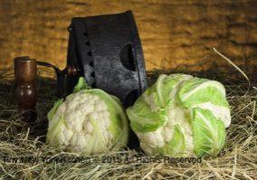 Cauliflower 5