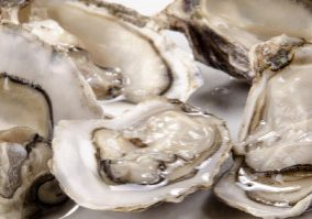 five fresh, open oysters from the west coast of Ireland